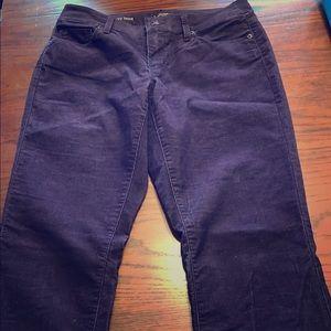Loft curvy bootcut corduroy pants
